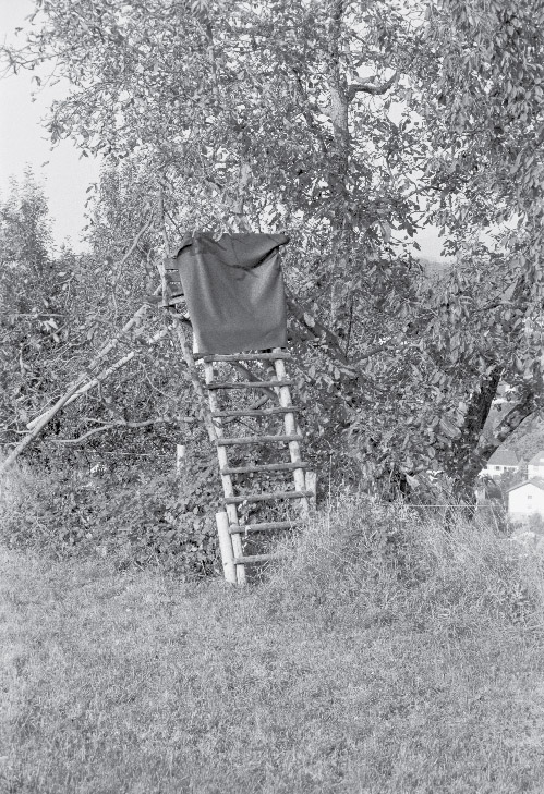 Hochsitz_Birkenau_2002-09-14