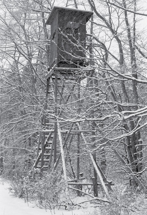 Hochsitz_Steinfischbach_2001-12-29_Bild-1
