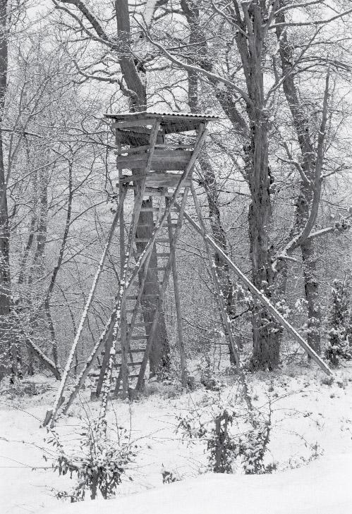 Hochsitz_Steinfischbach_2001-12-29_Bild-2
